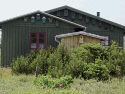 Foto Gartenhaus